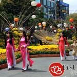 Đèn lồng trang trí đường hoa hội chợ ngày Tết